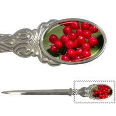 Red Berries 2 Letter Openers
