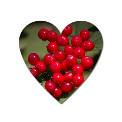 Red Berries 2 Heart Magnet