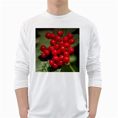 Red Berries 2 White Long Sleeve T Shirts