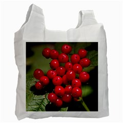 Red Berries 2 Recycle Bag (two Side)