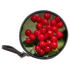 Red Berries 2 Classic 20 Cd Wallets