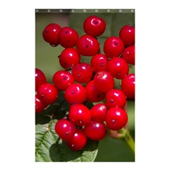Red Berries 2 Shower Curtain 48  X 72  (small)