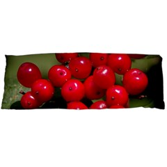 Red Berries 2 Body Pillow Case Dakimakura (two Sides)