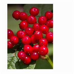 Red Berries 2 Large Garden Flag (two Sides)