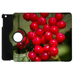 Red Berries 2 Apple Ipad Mini Flip 360 Case