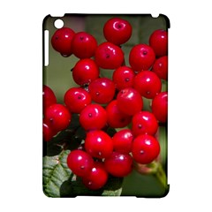 Red Berries 2 Apple Ipad Mini Hardshell Case (compatible With Smart Cover)