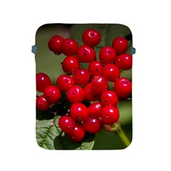 Red Berries 2 Apple Ipad 2/3/4 Protective Soft Cases