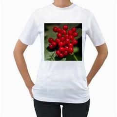 Red Berries 2 Women s T Shirt (white)