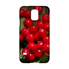 Red Berries 2 Samsung Galaxy S5 Hardshell Case