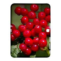 Red Berries 2 Samsung Galaxy Tab 4 (10 1 ) Hardshell Case