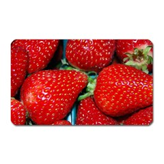 Strawberries 3 Magnet (rectangular)