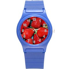 Strawberries 3 Round Plastic Sport Watch (s)