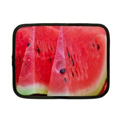 Watermelon 1 Netbook Case (small)