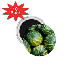 Watermelon 2 1 75  Magnets (10 Pack)