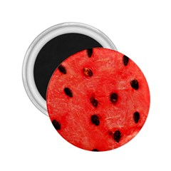 Watermelon 3 2 25  Magnets