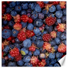 Wild Berries 1 Canvas 20  X 20
