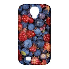 Wild Berries 1 Samsung Galaxy S4 Classic Hardshell Case (pc+silicone)