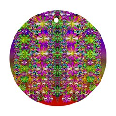 Flower Wall With Wonderful Colors And Bloom Round Ornament (two Sides)