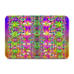 Flower Wall With Wonderful Colors And Bloom Plate Mats