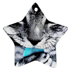 Purple Eyes Cat Ornament (star)