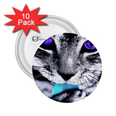 Purple Eyes Cat 2 25  Buttons (10 Pack)