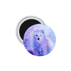 Arctic Iceland Fox 1 75  Magnets