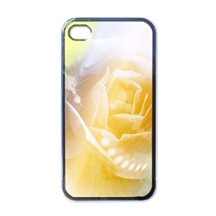 Beautiful Yellow Rose Apple Iphone 4 Case (black)