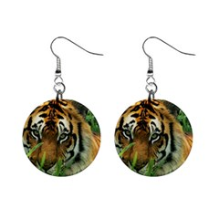 Tiger 1  Button Earrings