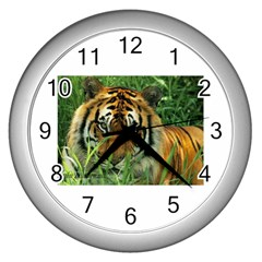 Tiger Wall Clock (silver)