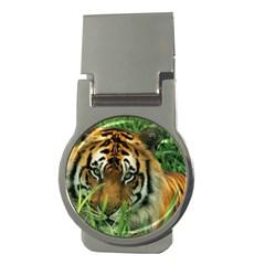 Tiger Money Clip (Round)
