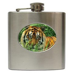 Tiger Hip Flask (6 oz)