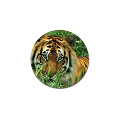 Tiger Golf Ball Marker (4 pack)