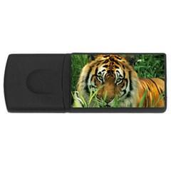 Tiger USB Flash Drive Rectangular (2 GB)