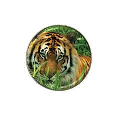 Tiger Hat Clip Ball Marker (10 pack)