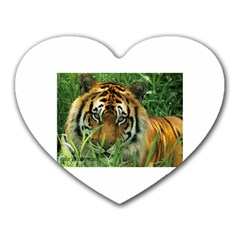 Tiger Mousepad (heart)