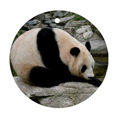 Giant Panda Ornament (Round)