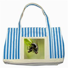 Fly Striped Blue Tote Bag
