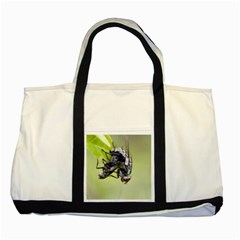 Fly Two Tone Tote Bag