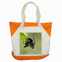 Fly Accent Tote Bag