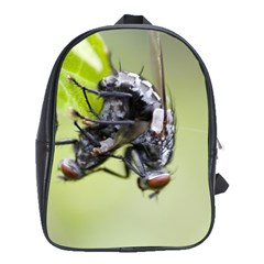 Fly School Bag (Large)