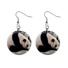 Giant Panda 1  Button Earrings