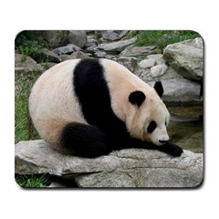 Giant Panda Large Mousepad