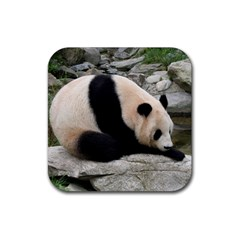 Giant Panda Rubber Square Coaster (4 Pack)