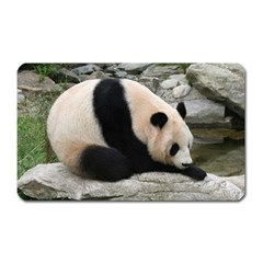 Giant Panda Magnet (rectangular)