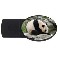 Giant Panda Usb Flash Drive Oval (4 Gb)