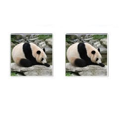 Giant Panda Cufflinks (Square)