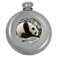 Giant Panda Hip Flask (5 Oz)