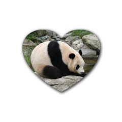 Giant Panda Rubber Coaster (Heart)