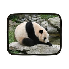 Giant Panda Netbook Case (Small)