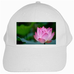 Red Pink Flower White Cap